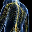 Chiropractor for chronic back pain: Dawn's story
